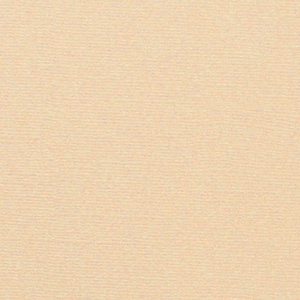 Bazix Cardstock Canvas 12×12″ von CreaMotion