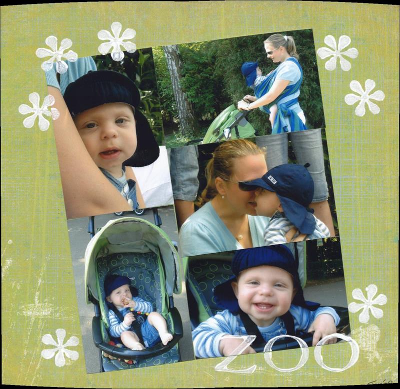 tim_zoo