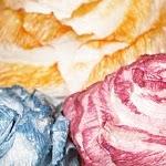 vintage-rosen-ausschnitt