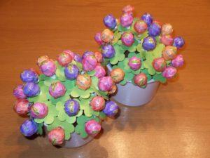 lollipop-pflanze-ganz