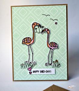 Happy Bird-Day