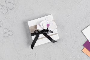 Gut verpackt – Ritter Sport Verpackung