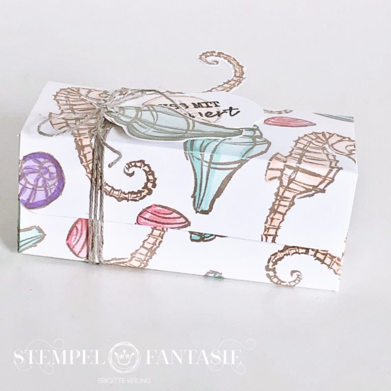 Meeresbox in Pastelltönen